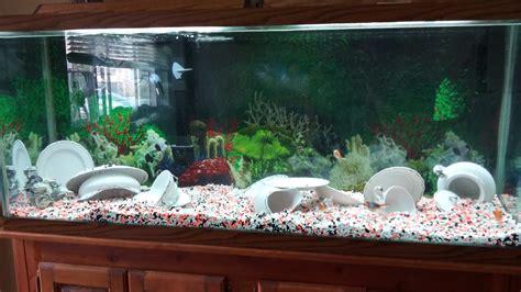 fish tank decorations cheap set up my fish tank aquarium decorations are