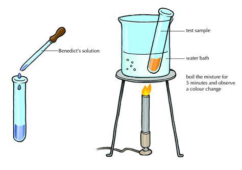 test cuisine organic compounds the chemistry of siyavula