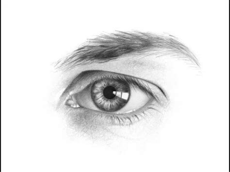 draw  male face realistic pencil drawing kick