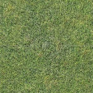 Green grass texture seamless 12989