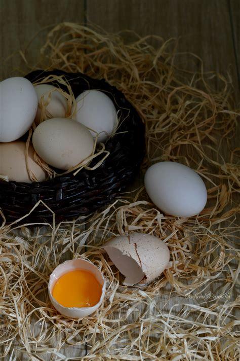 pastorizzare le uova in casa come pastorizzare le uova rafano e cannella