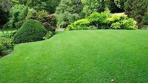 Quand Semer Du Gazon : semer du gazon rustique jardiner avec jean paul ~ Dailycaller-alerts.com Idées de Décoration