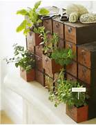 26 Mini Indoor Garden Ideas To Green Your Home Interior Obsessions Indoor Gardens Paper And Stitch Indoor Gardening Archives Soap Deli News Indoor Garden Ideas