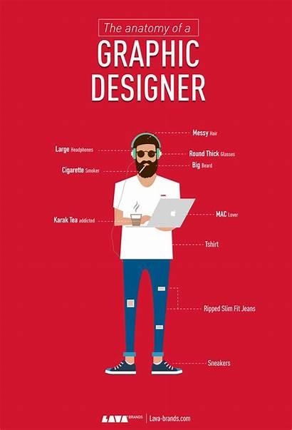Graphic Designer Visual Characteristics Anatomy Brands Infographic