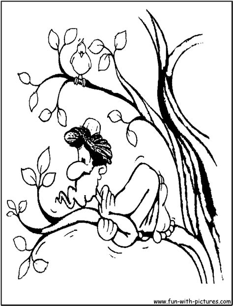 zacchaeus  coloring pages sketch coloring page
