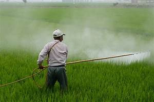 What is Agricultural Pollution? Its causes, effects, types ...