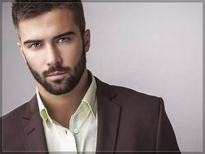 beard styles for men with round face | Beard Styles For ...