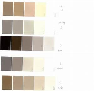 nuancier couleur lin great canape cuir atlas with With lovely nuancier peinture couleur taupe 3 tollens nuancier pas cher