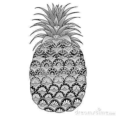 art design  pineapple  coloring book  adult