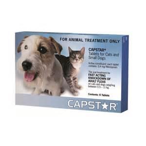 capstar for cats capstar small cat flea treatment petbarn