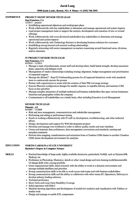 Sle Resume For Technical Lead by Senior Tech Lead Resume Sles Velvet