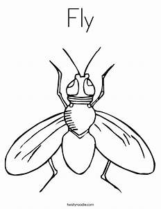 Fly Coloring Page - Twisty Noodle