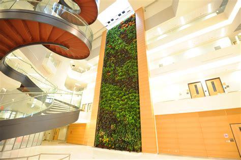 Parker Interior Plantscapes Project 2018 Green Plants