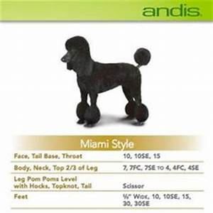 Andis Poodle Chart Master The Bichon Style Poodle Cut And More With Andis