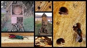 Fabriquer Un Hotel A Insecte : comment fabriquer un nichoir ou h tel insectes ~ Melissatoandfro.com Idées de Décoration