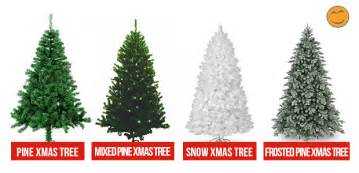 What Type Christmas Tree Best