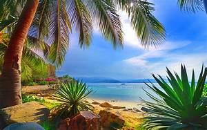 beautiful wallpaper sea shore