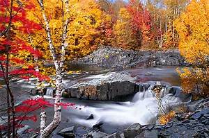 Many Means  Beautiful Streams   Amazing Photography