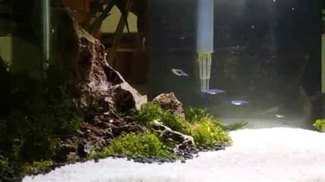 Fluval Edge Aquascape by Fluval Edge Aquascape Iwagumi Tank
