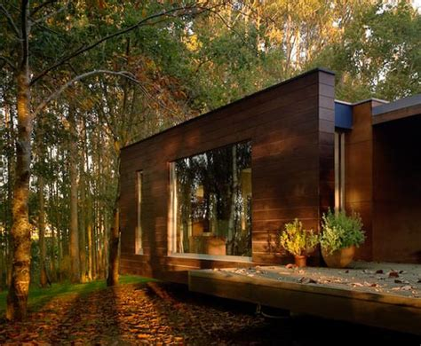 spectacular forest house designed  crecente rosales