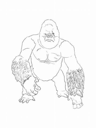 Kong King Coloring Pages Printable Mycoloring