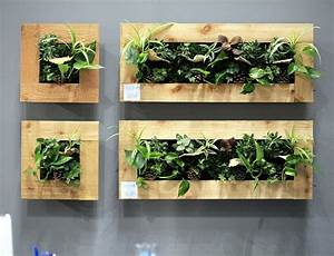 1001 idees deco originales pour un mur vegetal interieur With ordinary decoration mur exterieur jardin 4 creer un mur vegetal en interieur