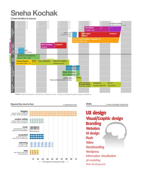 visual infographic resume exles vizualresume