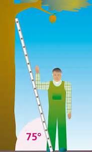 Leiter Auf Treppe Stellen : anstellwinkel leiter ~ Eleganceandgraceweddings.com Haus und Dekorationen