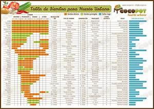 Calendario de siembra el Paladar
