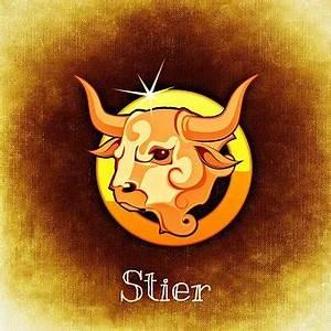 Passt Steinbock Zu Stier : astrologie kostenlose bilder auf pixabay 2 ~ Markanthonyermac.com Haus und Dekorationen