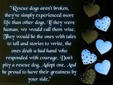Dog Rescue Quotes And Sayings