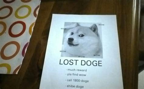 Doge Meme Origin - image 629173 doge know your meme