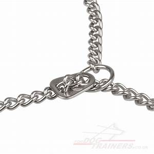 Limited Slip Collar for Dogs | Stainless Steel Dog Collar