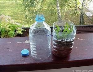 Pflanzen Bewässern Mit Plastikflasche : blog seite 9 die lindwurmfeste ~ Markanthonyermac.com Haus und Dekorationen