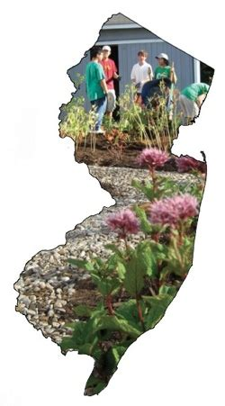 The Native Plant Society Of New Jersey