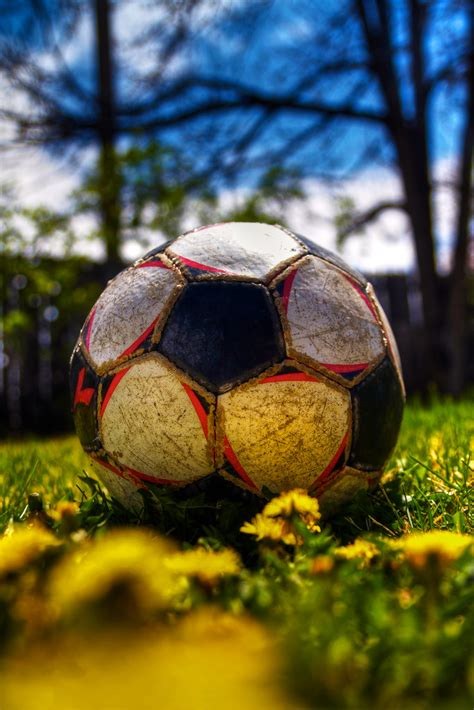 spring  sprung picture   soccer ball