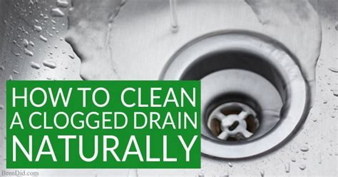 naturally clean  clogged drain  definitive