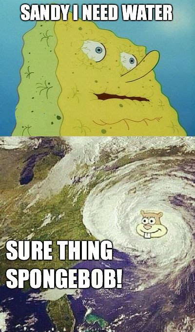 Spongebob Water Meme - sandy spongebob hurricane water