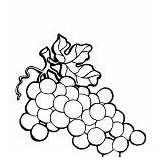 Coloring Plantation Grapes sketch template
