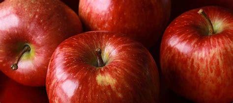 dieta mela rossa forum