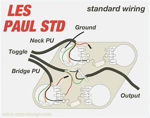 Epiphone Les Paul Standard Wiring Diagram  U2013 Vivresaville Com