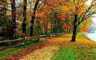 Backgrounds Fall Foliage Desktop Pc Wallpapersafari
