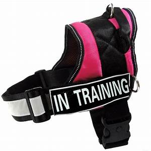 Service Dog Vest Reflective Harness Label Patch In