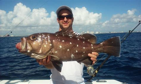 grouper deep snowy fishing dropping lauderdale crazy sea offshore caught ft nice shipwreck fishheadquarters angler happy headquarters