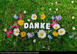 Blumen Verschicken Auf Rechnung : danke text auf blumen wiese lizenzfreies bild 14250967 bildagentur panthermedia ~ Themetempest.com Abrechnung
