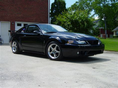 cobra  sale  mustang source ford mustang forums