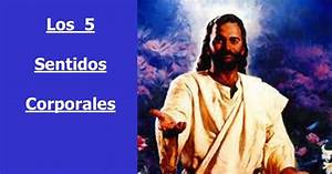 lojeda: La oración de los cinco sentidos