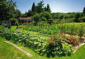 Solarkugeln Garten Obi : so funktioniert kologisches g rtnern obi informiert ~ Buech-reservation.com Haus und Dekorationen