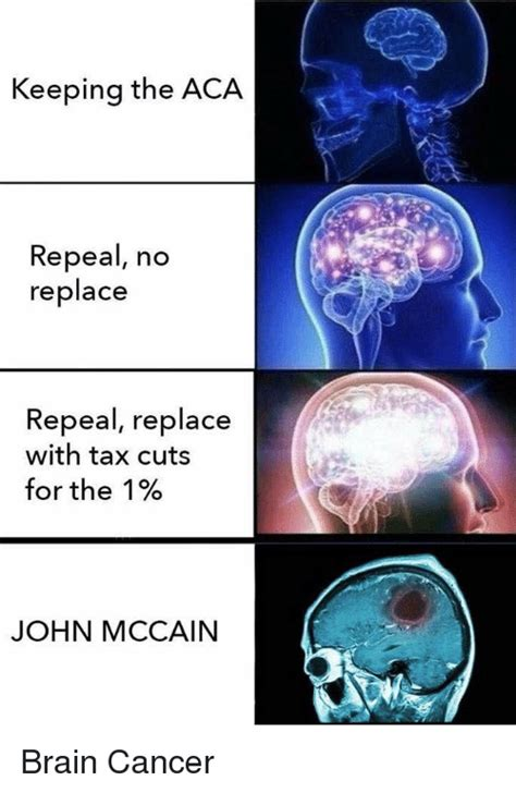 Brain Cancer Meme - keeping the aca repeal no replace repeal replace with tax cuts for the 1 john mccain brain