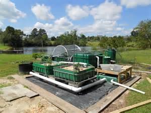 Self-Sustaining Aquaponic Garden